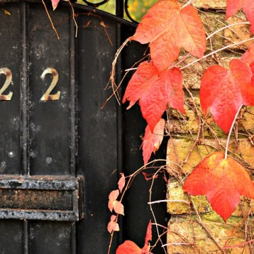 doors-211752_960_720