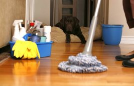 cleaning